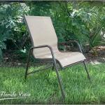 C-50SL Dining Chair