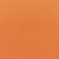Canvas Tangerine